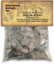 Dig in a Day Kit  The Dig in a Day kit allows the educator to set up a fun and exciting fossil hunt for the students!